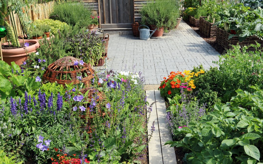 Are you still missing something in your life? Maybe a nutritious garden!
