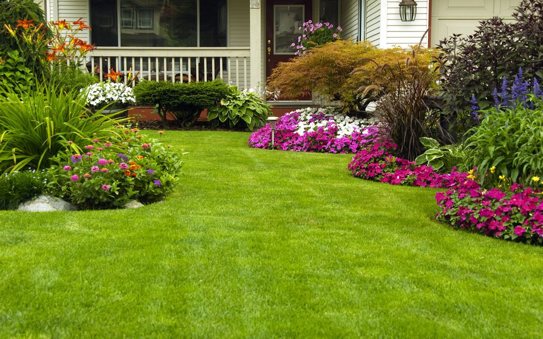 A look at a few surprising benefits of landscape gardening